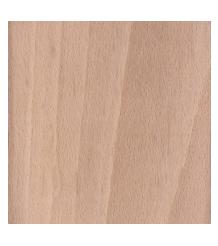 Beech Tree Wood