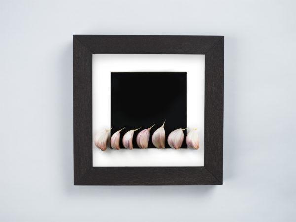 garlic frame