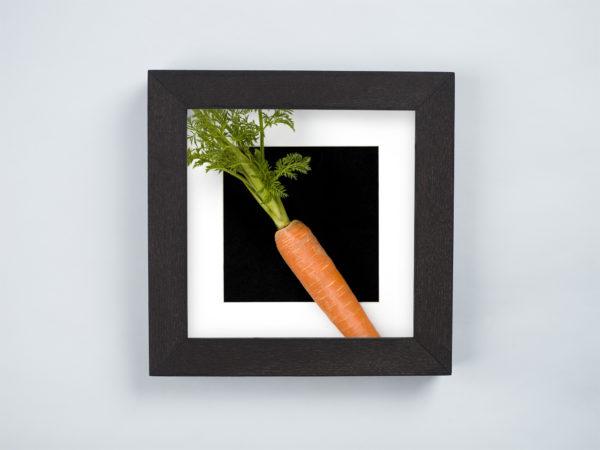 carrot frame