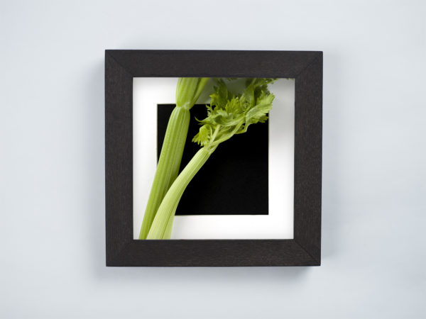 celery frame