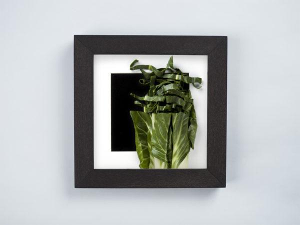 chard herb frame
